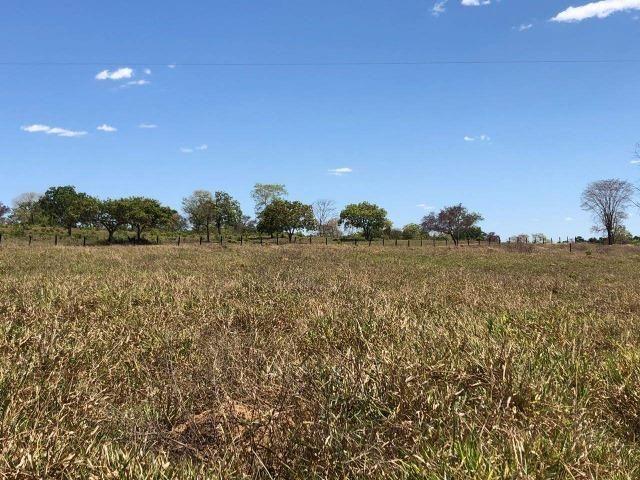 Fazenda - Paraíso do Tocantins/TO - Foto 15