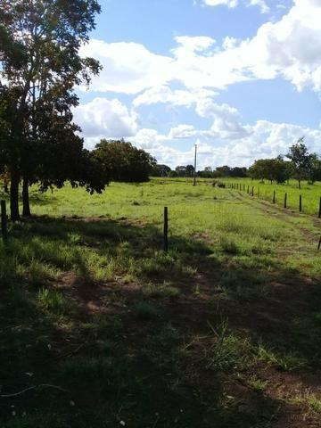Fazenda 350,hectares beira do rio cuiaba - Foto 12