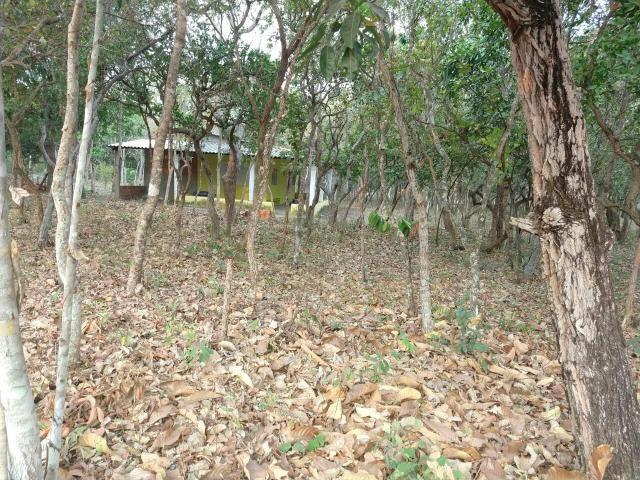 Chácara em Santo Antônio 85.000,00 R$ - Foto 3