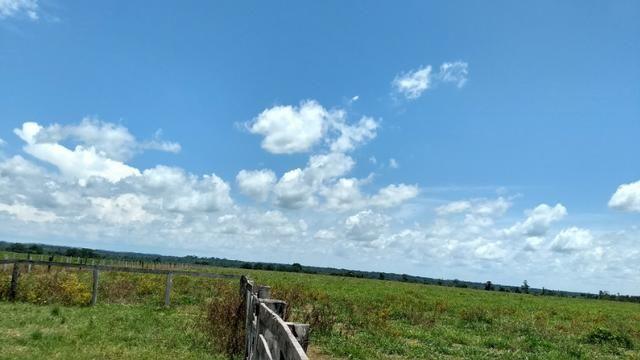 Fazenda 1.028 Hectares Dupla Aptidão - Nova Guarita - MT - Foto 5