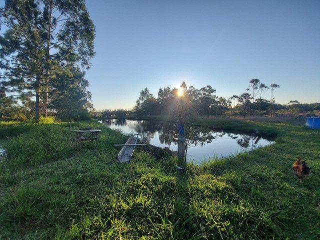 Velleda oferece sítio 2,5 hectares a 700 metros da RS040, ac troca - Foto 6
