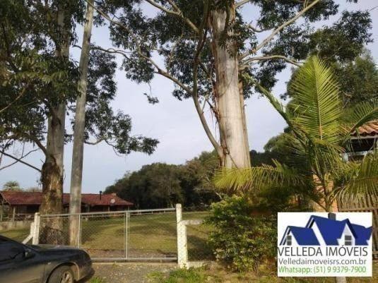 Velleda of. sítio 3,9 hectares, vista magnífica, casa, piscina - Foto 6