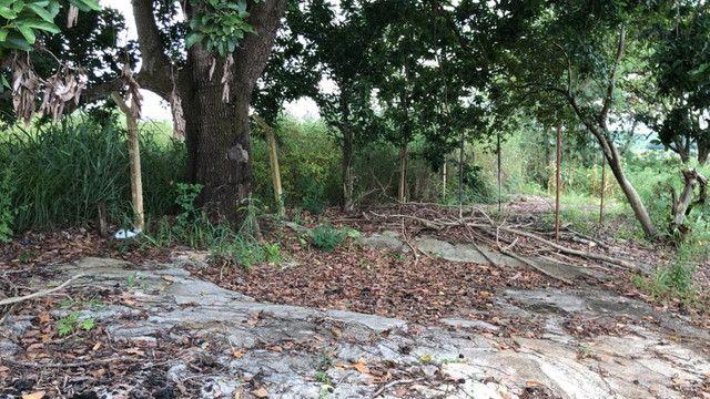 Terreno 6480 m2 Pato de Minas,Usina concreto e cimento com  - Foto 14