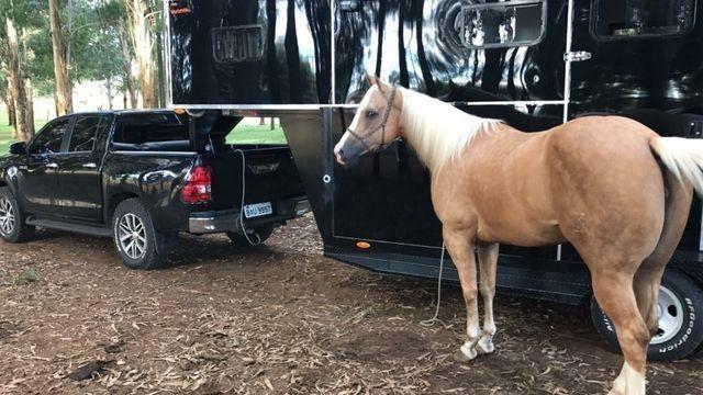 Trailler pra rodeio, para 2 Cavalos 5º roda! Impecável - Foto 2