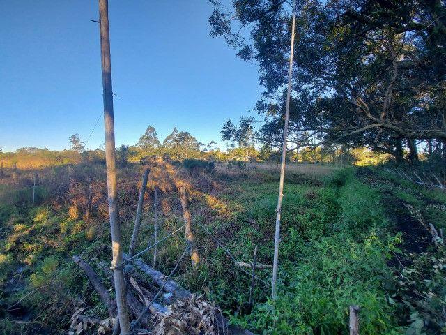 Velleda oferece sítio 2,5 hectares a 700 metros da RS040, ac troca - Foto 12