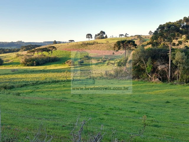 Terreno Rural com 47.442m² no Capão Alto - Foto 19