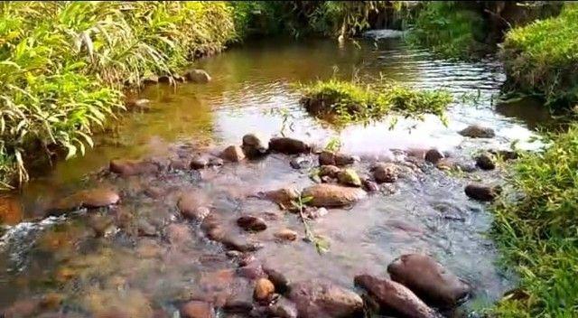 Excelente Investimento!!! Chácaras Rurais, em Piranguçu - MG - Foto 6