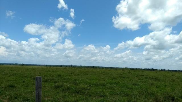 Fazenda 1.028 Hectares Dupla Aptidão - Nova Guarita - MT