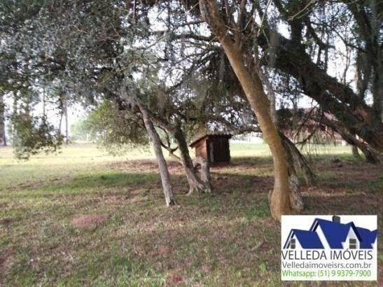 Velleda of. sítio 3,9 hectares, vista magnífica, casa, piscina - Foto 5