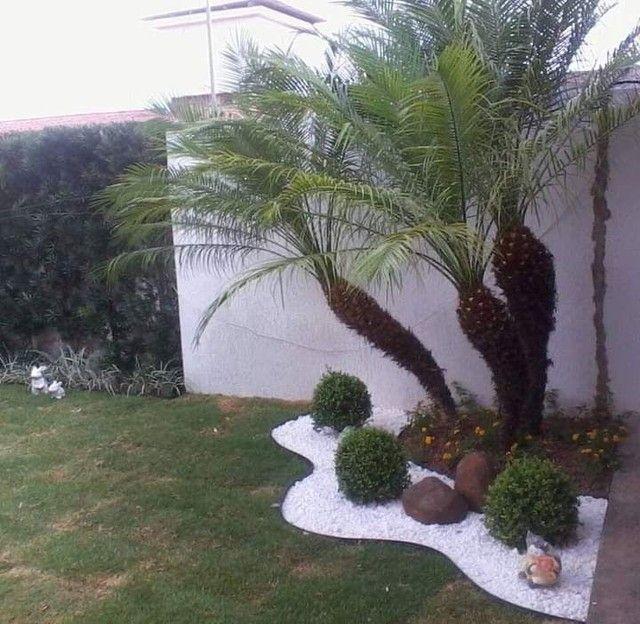 Jardineiro Paisagista - Foto 3