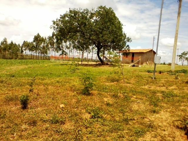 Vende-se Sitio 44 ha a 27 km de presidente - Foto 2