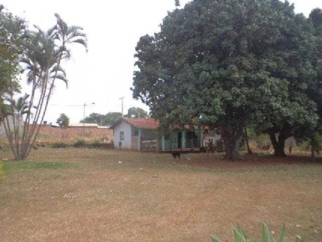 Terreno à venda com 0 dormitórios em Zona rural, Goianira cod:901 - Foto 4