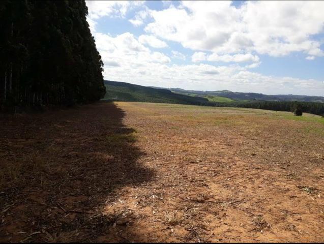 Terreno rural - Foto 9