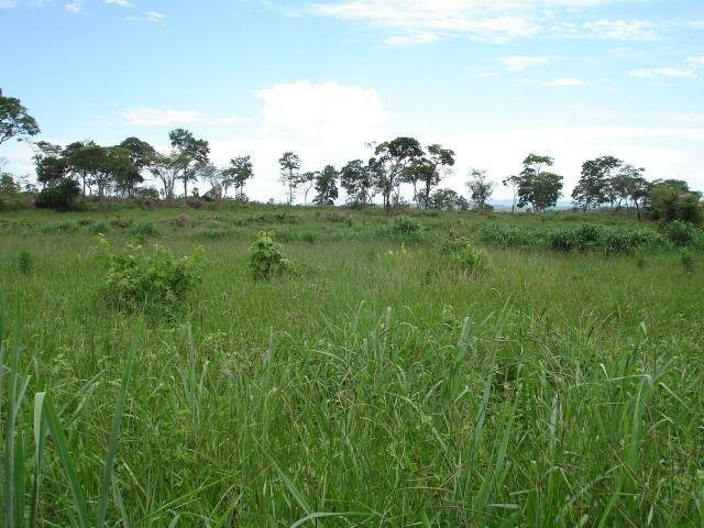 Fazenda 484 hectares em Governador Valadares/MG - Foto 5