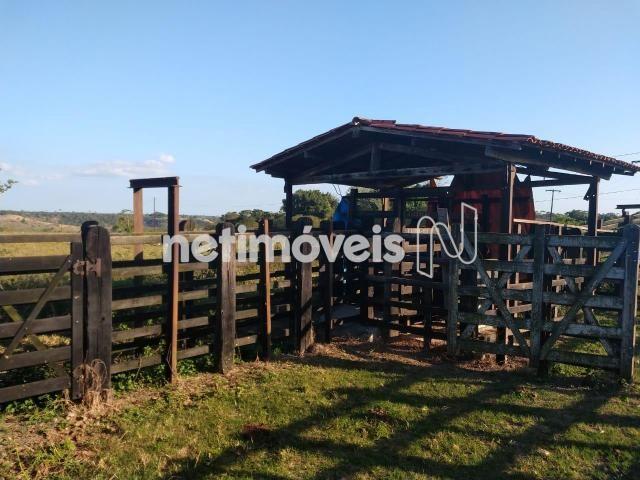 Terreno à venda em Fazenda, São gonçalo dos campos cod:720362 - Foto 9