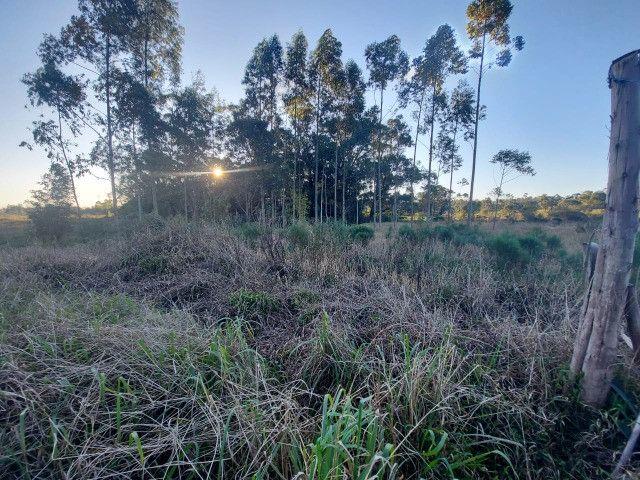 Velleda oferece sítio 2,5 hectares a 700 metros da RS040, ac troca - Foto 17