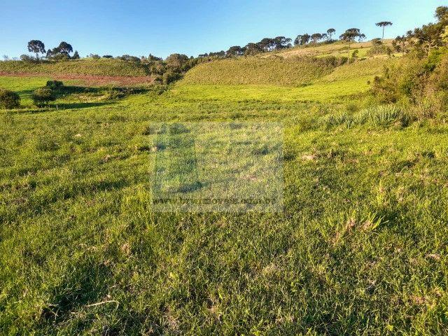 Terreno Rural com 47.442m² no Capão Alto - Foto 17