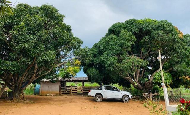 Samuel Pereira oferece: Linda chácara 4,2 hectares, Núcleo Rural Bom Sucesso regularizado - Foto 15