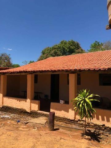 Fazenda - Paraíso do Tocantins/TO - Foto 3