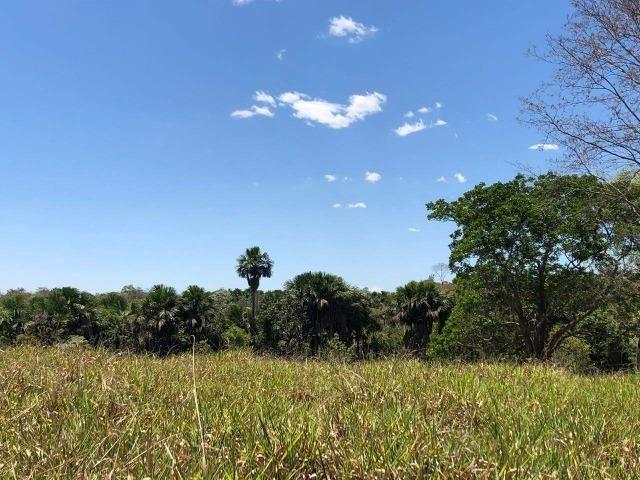 Fazenda - Paraíso do Tocantins/TO - Foto 17
