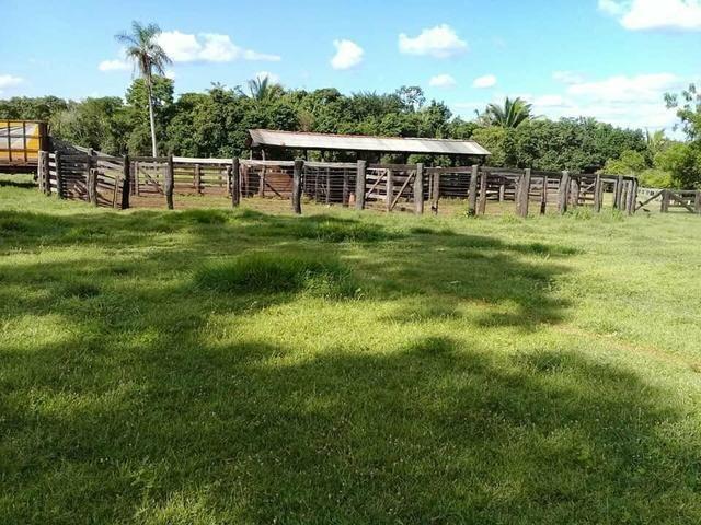 Fazenda 350,hectares beira do rio cuiaba - Foto 7