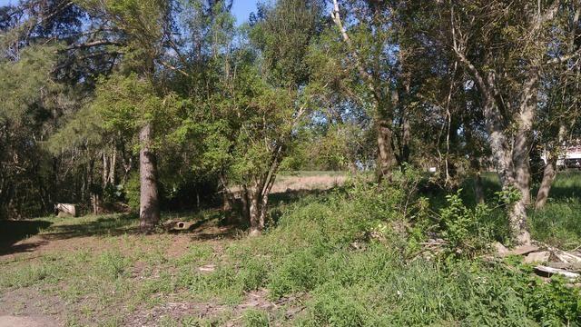 Sítio chácara margem RS287 Venâncio Aires Linha Hansel - Foto 2