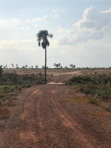 Fazenda no Bonfim - Foto 8