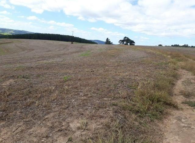 Terreno rural - Foto 10
