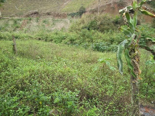 Excelente terreno em contendas S J V do Rio preti - Foto 6