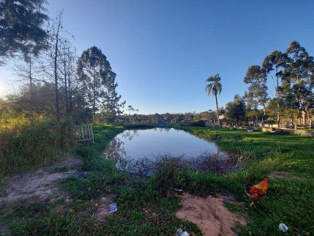 Velleda oferece sítio 2,5 hectares a 700 metros da RS040, ac troca - Foto 4