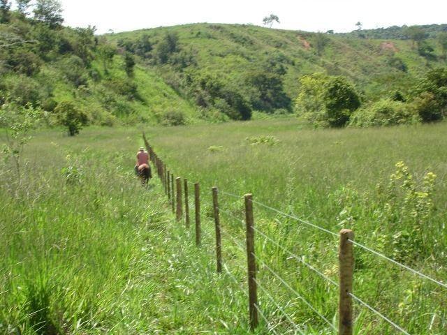 Fazenda 484 hectares em Governador Valadares/MG - Foto 6