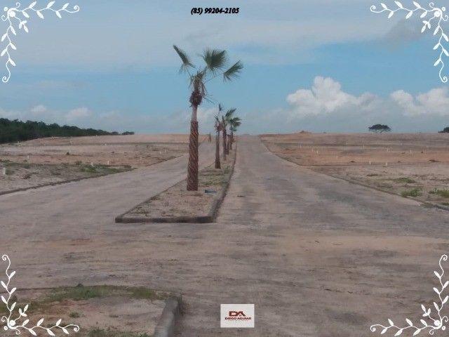 && Loteamento Mirante do Iguape &&  - Foto 2