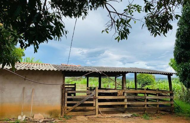 Samuel Pereira oferece: Linda chácara 4,2 hectares, Núcleo Rural Bom Sucesso regularizado - Foto 5