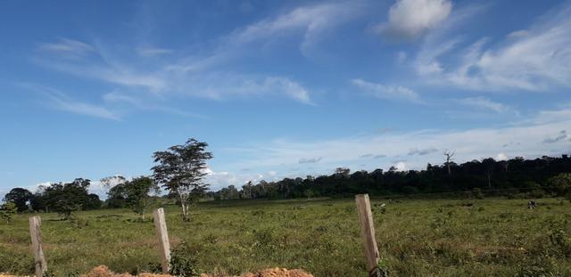 fazenda em roraima 2140 hectares com 840 de pastagens