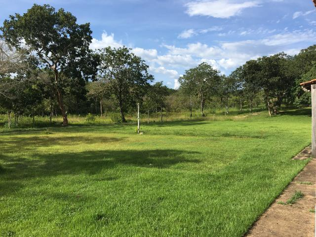 Vendo Chacara na região do Sucuri - Foto 6