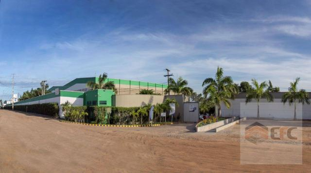Galpão para alugar, 1164 m² por r$ 20.952/mês - parque de exposições - parnamirim/rn - Foto 4