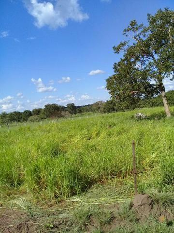 Fazenda 350,hectares beira do rio cuiaba - Foto 6