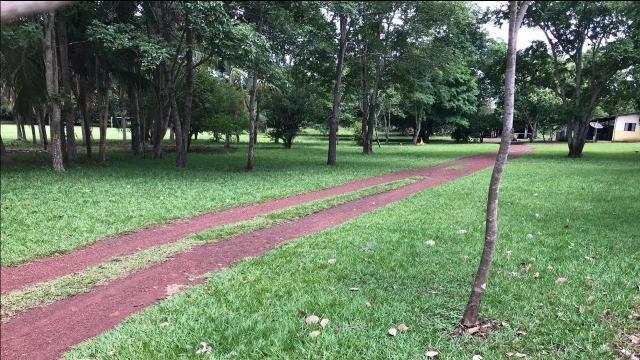 Fazenda 350,hectares beira do rio cuiaba - Foto 9
