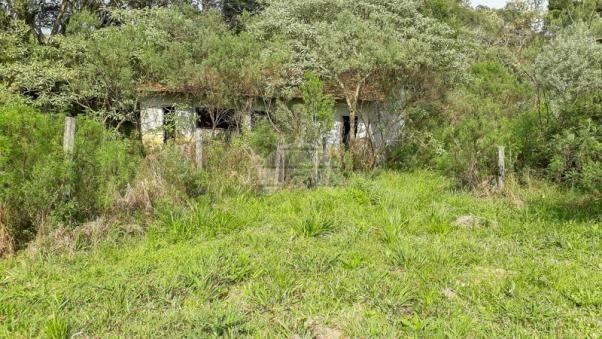 Chácara à venda em Chácara águas claras, Piraquara cod:150595 - Foto 4