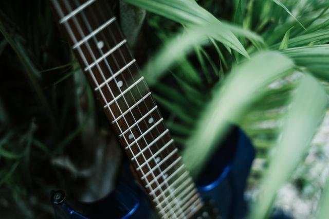 Guitarra Golden + Amplificador Crate - Foto 6