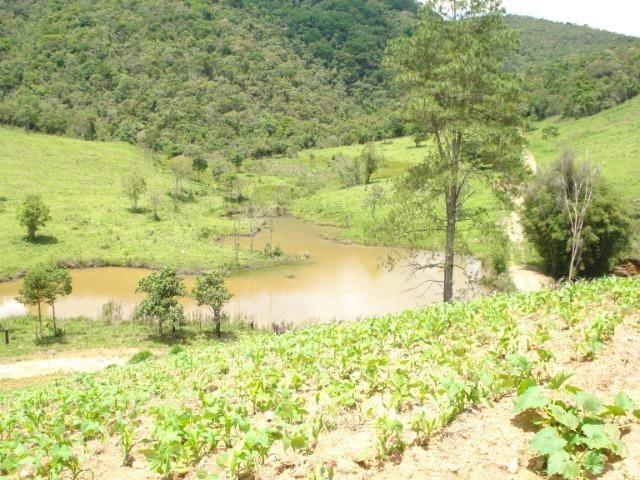 Alugo Fazenda em Liberdade MG - Foto 7
