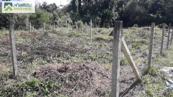 Terreno-para-Venda-em-Vila-das-Palmeiras-Morretes-PR - Foto 2