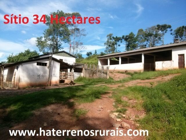 Sítio 34 hectares - Foto 4