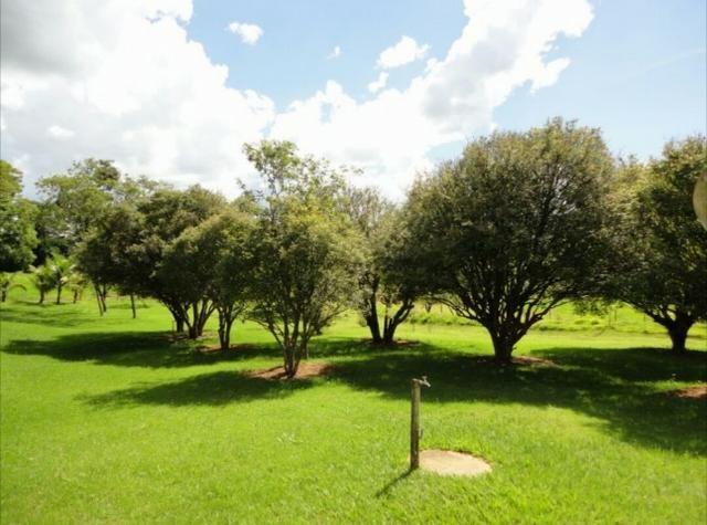 Fazenda 700 Alqueires - Região de Presidente Prudente-SP - Foto 14