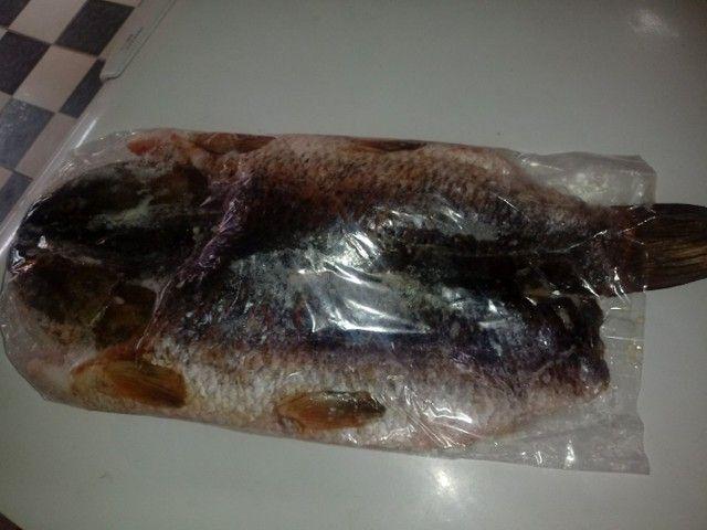 Vendo peixe atacado e varejo - Foto 6