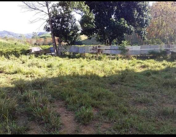 Fazenda em Santa Rosa, Região de Aracruz- Bia Araújo - Foto 4