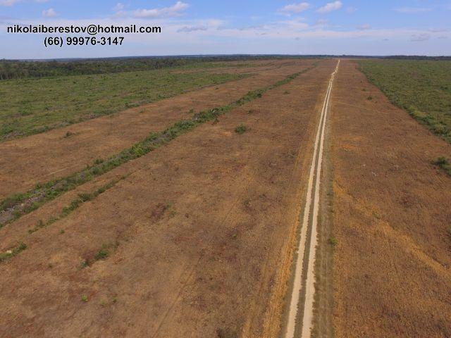 Fazenda 1.131 hectares nordeste mt nikolaiimoveis