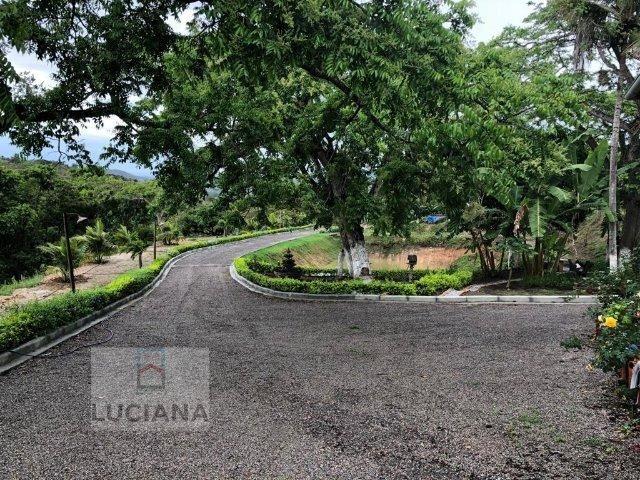 Propriedade em Mandacarú (Cód.: 31da83) - Foto 2