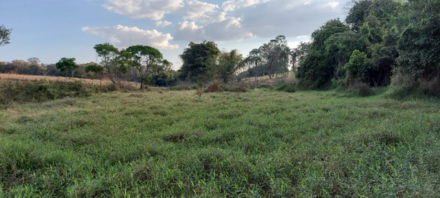 Chácara dentro de Goiânia de 33.696 m² - Foto 5