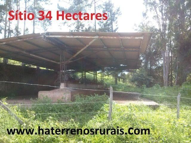 Sítio 34 hectares - Foto 5